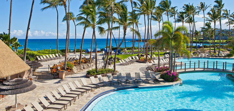 Relax with a day of beach chairs and palm trees in the Caribbean